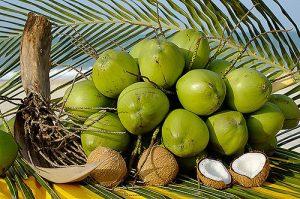 coco-verde
